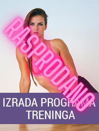 INDIVIDUALNO PROGRAMIRANJE TRENINGA - IZRADA PROGRAMA TRENINGA